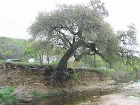 erosion1_04.jpg